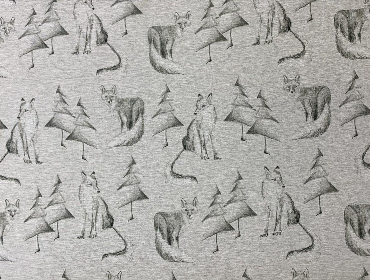 Zīmētas lapsas uz melange