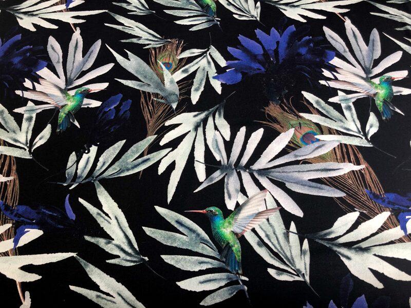 Kolibri uz tumši melni zila